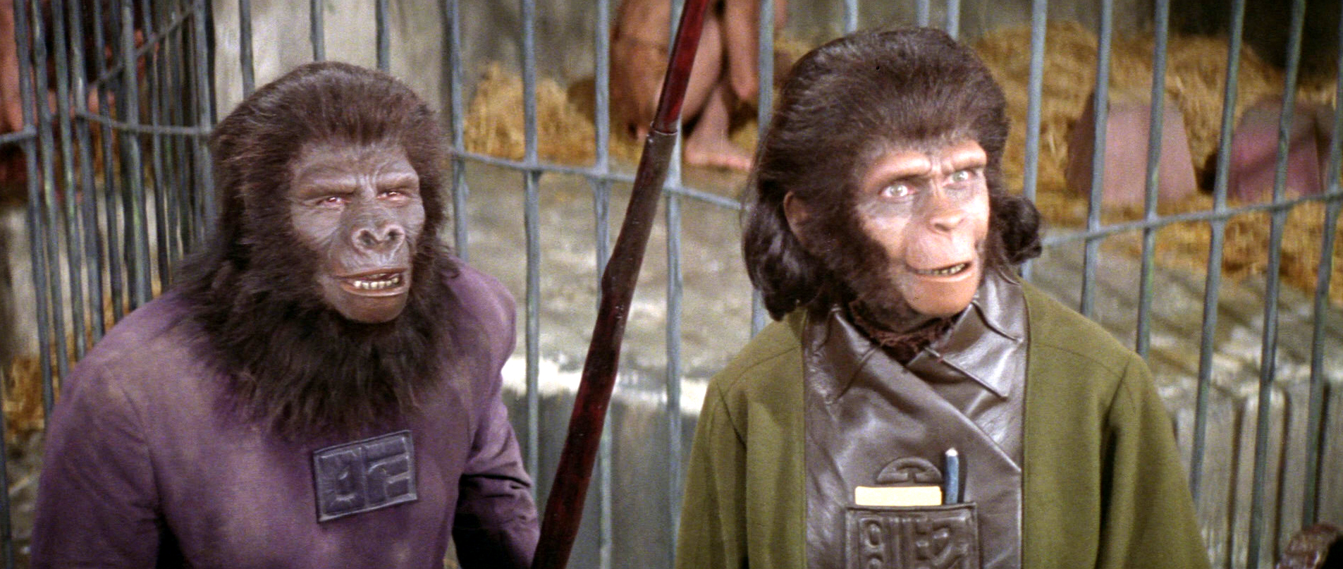 Like Makeup midget monkey consider